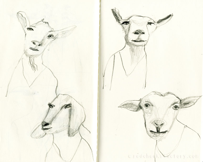 Goats pencil drawings from my sketchbook 1