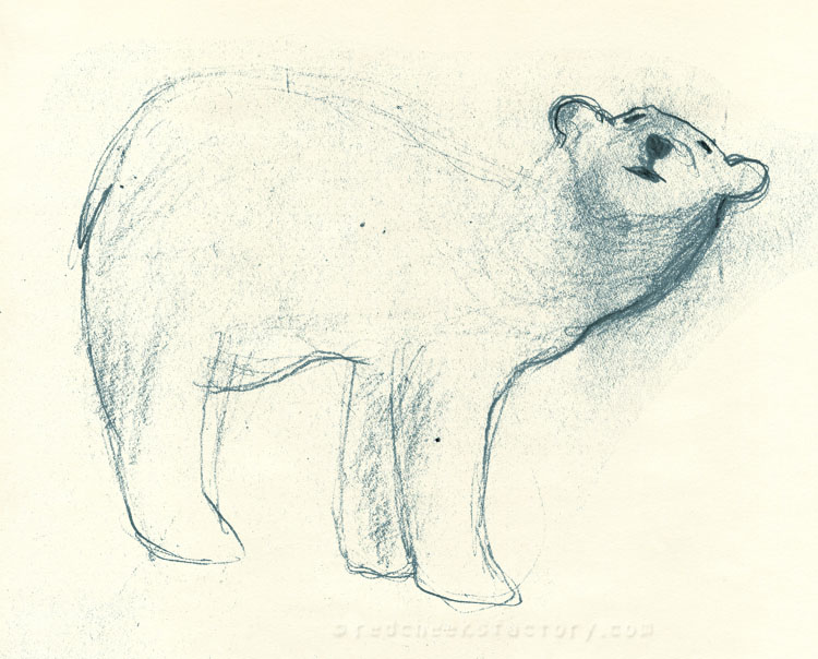 Polar Bear study from mu sketchbook 3